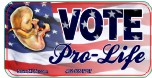 Vote Pro-Life 1x2 Envelope Sticker